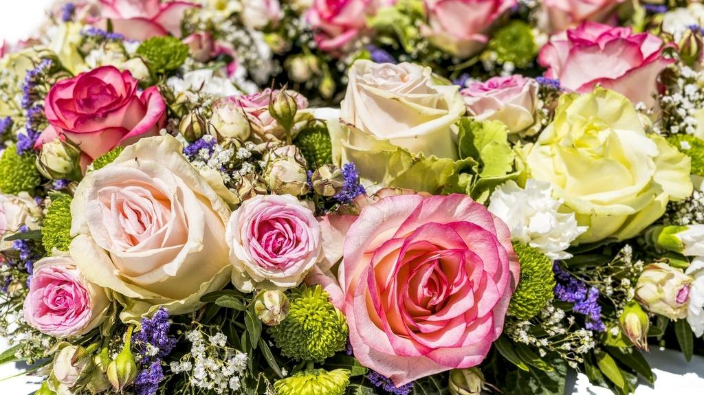 flowers-3441662_1920.jpeg