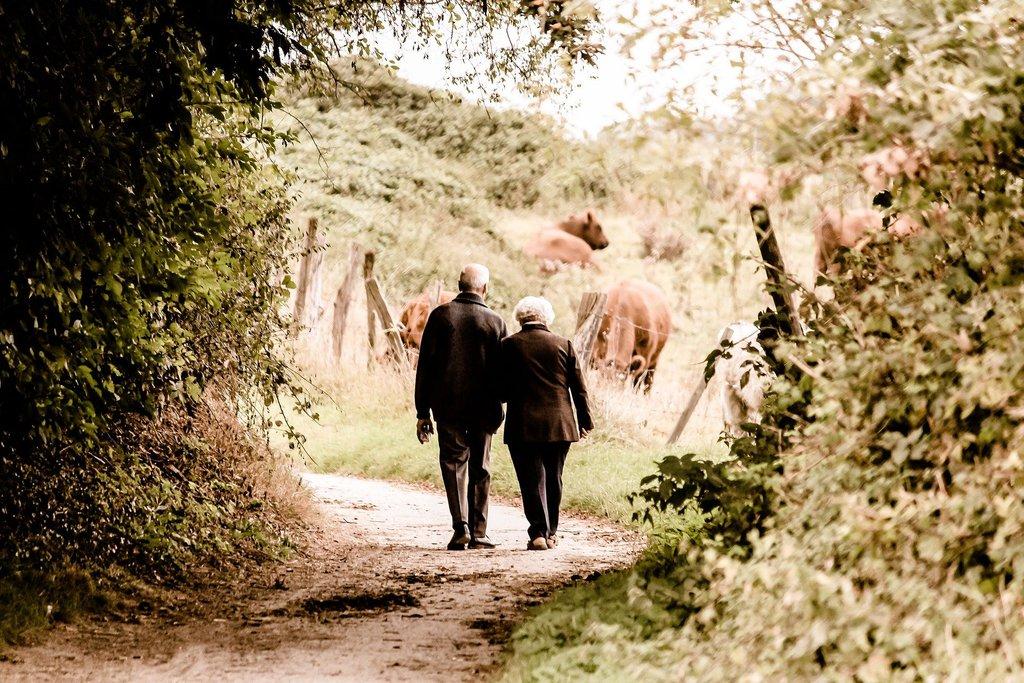 Para starszych ludzi, trzymających się za ręce, idących przez las