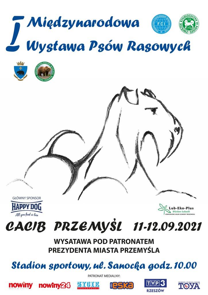 Plakat_Przemysl_2021ok.jpeg