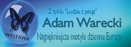 banerek Adam Warecki.jpeg
