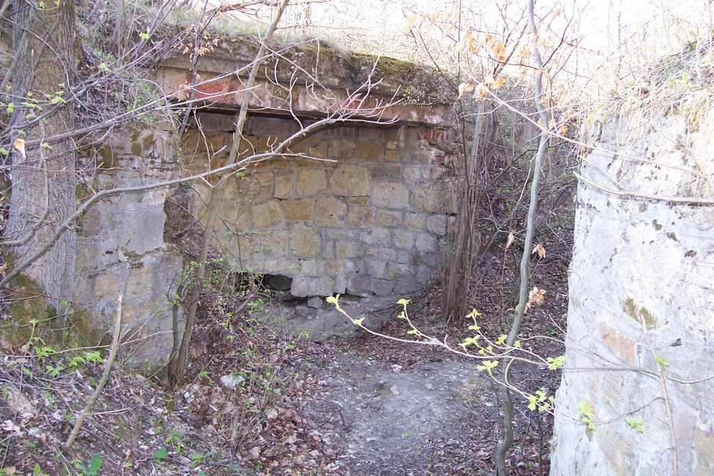 Fragment Fortu VI Iwanowa Góra (Helicha).jpeg