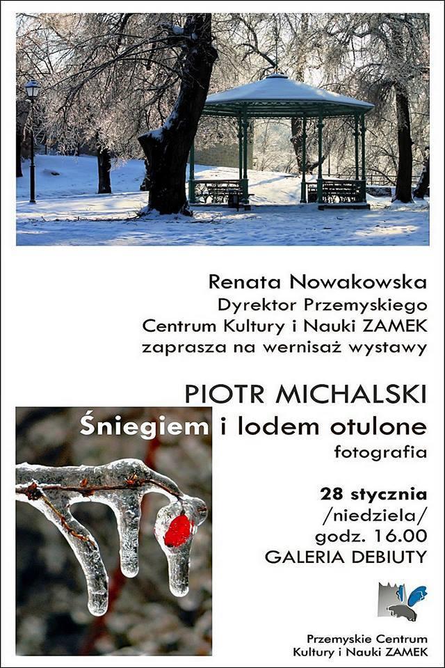 Piotr Michalski - Śniegiem i lodem otulone.jpeg