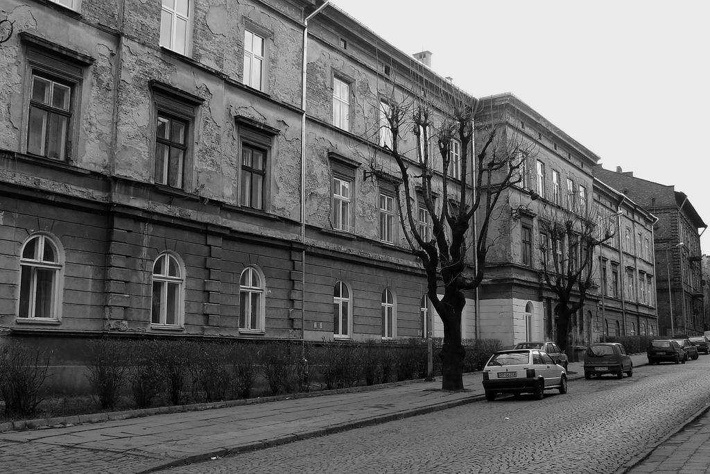 Fragment zabudowy ulicy Smolki.jpeg