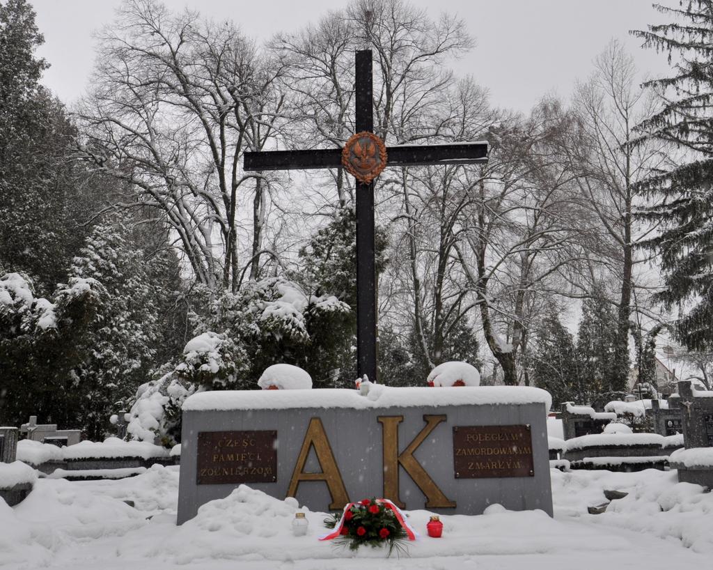 Rocznica powstania AK (3).jpeg