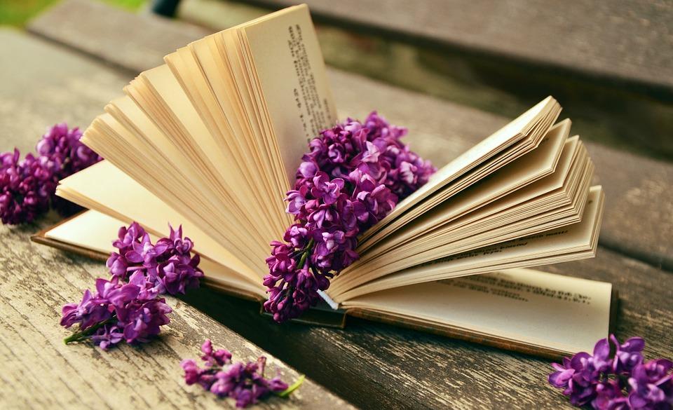 book-759873_960_720.jpeg