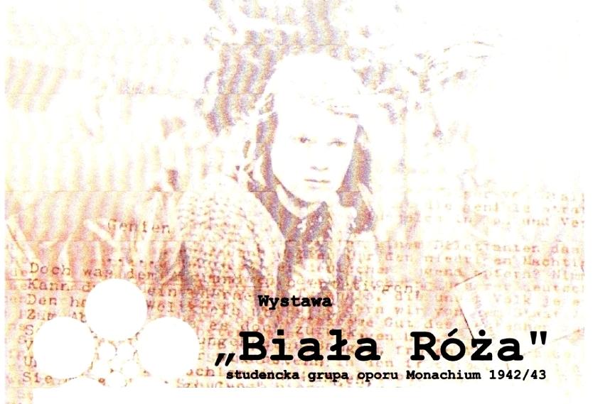 plakat-biala-roza_gł.jpeg