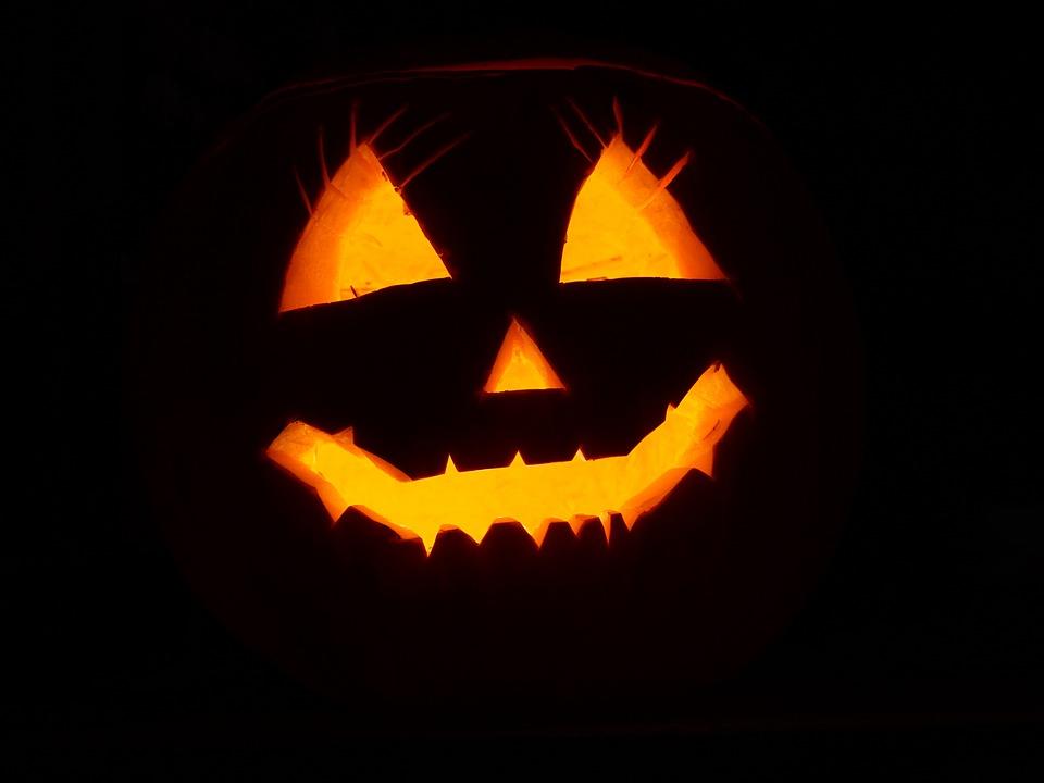 pumpkin-2892303_960_720.jpeg