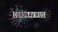 coronavirus-4923544_1920.jpeg