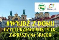 plakat Akcja Stop Przewodnik Czeka Wyjdz_z_domu_2020 gł.jpeg