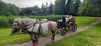 Galeria Wirtualne oprowadzanie po krasiczyńskim zamku i parku – niebawem na antenie TVP3 oraz w internecie