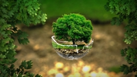 environment-2196690_1280.jpeg