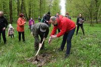 akcja sadzenia drzew w Parku na Lipowicy