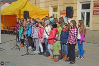 Galeria 20-03-2015-Makulatura-szklo