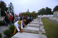 Galeria Znicze na Cmentarz Orląt Lwowskich