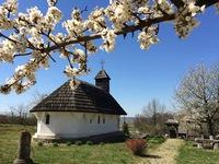 Galeria Jedenastka w Rumunii