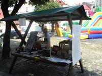Galeria 27-08-2017 V Piknik Organizacji Pozarządowych
