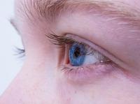 wielkie badanie wzroku.jpeg