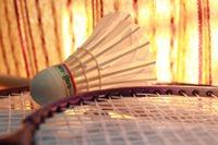 badminton-166404_960_720.jpeg