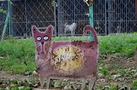 Galeria Dziś Światowy Dzień Zwierząt. Przypominamy o naszych bezbronnych czworonożnych przyjaciołach…
