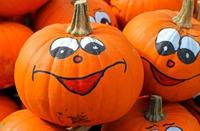 pumpkins-469641_960_720.jpeg